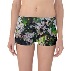 Tree Blossoms Reversible Bikini Bottoms by dawnsiegler