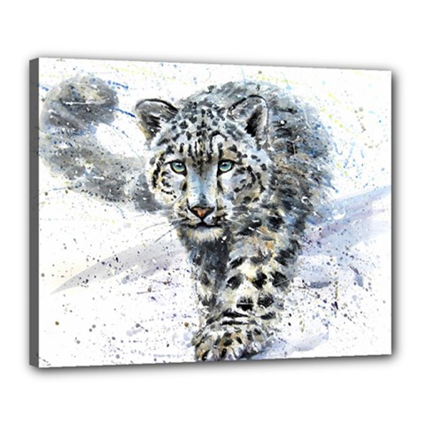 Snow Leopard  Canvas 20  X 16  by kostart