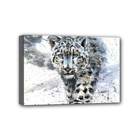Snow Leopard  Mini Canvas 6  X 4  by kostart