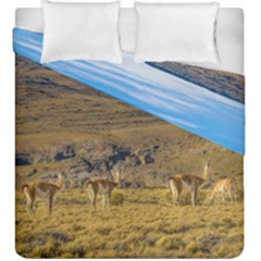 Group Of Vicunas At Patagonian Landscape, Argentina Duvet Cover Double Side (king Size) by dflcprints