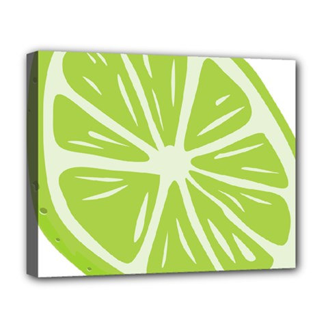 Gerald Lime Green Deluxe Canvas 20  X 16   by Mariart