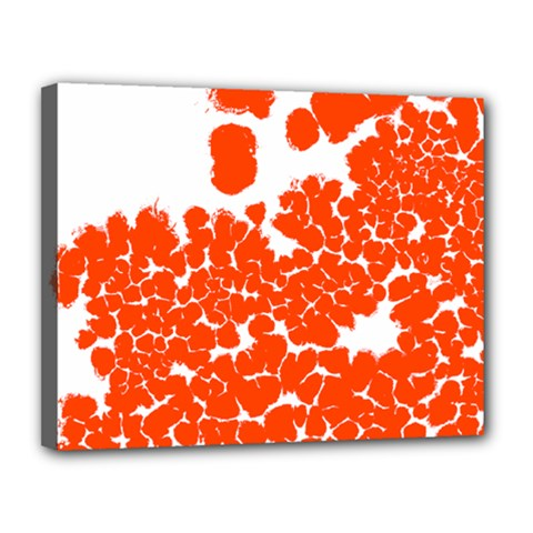Red Spot Paint White Polka Canvas 14  X 11  by Mariart