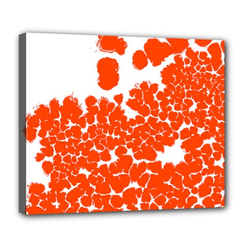 Red Spot Paint White Polka Deluxe Canvas 24  X 20   by Mariart