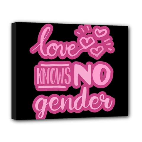 Love Knows No Gender Deluxe Canvas 20  X 16