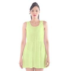 Neon Color   Pale Lime Green Scoop Neck Skater Dress
