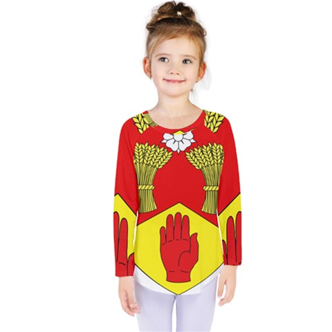 County Londonderry Coat Of Arms  Kids  Long Sleeve Tee by abbeyz71
