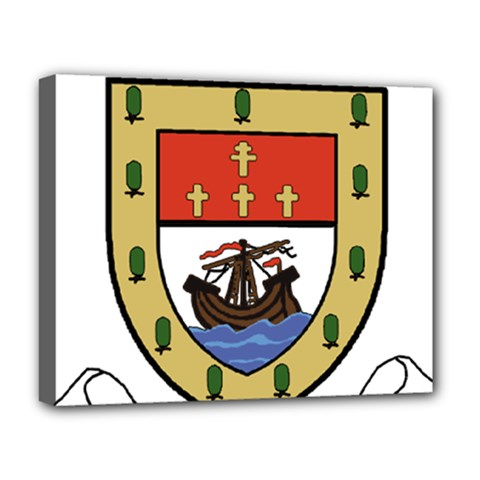County Mayo Coat Of Arms Deluxe Canvas 20  X 16   by abbeyz71