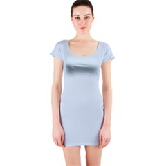 Pastel Color   Light Azureish Gray Short Sleeve Bodycon Dress