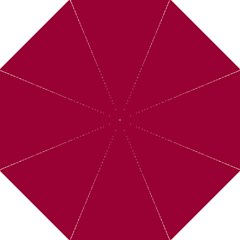 Flag Of The Apprentice Boys Of Derry Hook Handle Umbrellas (large) by abbeyz71