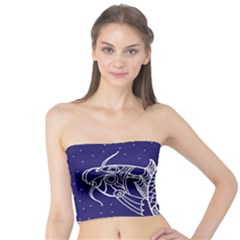 Pisces Zodiac Star Tube Top by Mariart