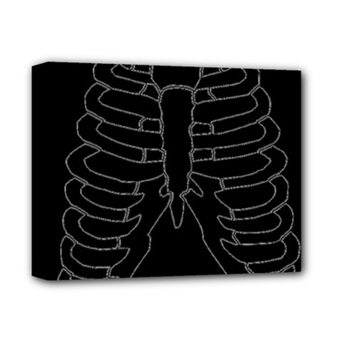 X Ray Deluxe Canvas 14  X 11