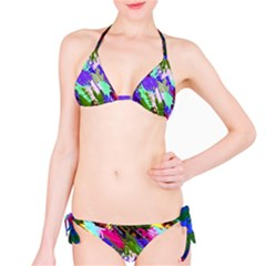 Tropical Jungle Print And Color Trends Bikini Set by Nexatart