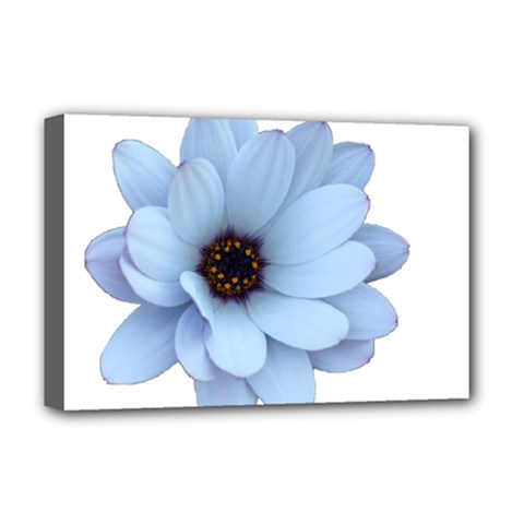 Daisy Flower Floral Plant Summer Deluxe Canvas 18  X 12   by Nexatart