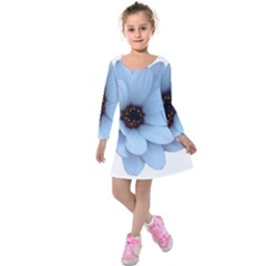 Daisy Flower Floral Plant Summer Kids  Long Sleeve Velvet Dress by Nexatart