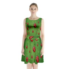 Ladybugs Red Leaf Green Polka Animals Insect Sleeveless Waist Tie Chiffon Dress by Mariart