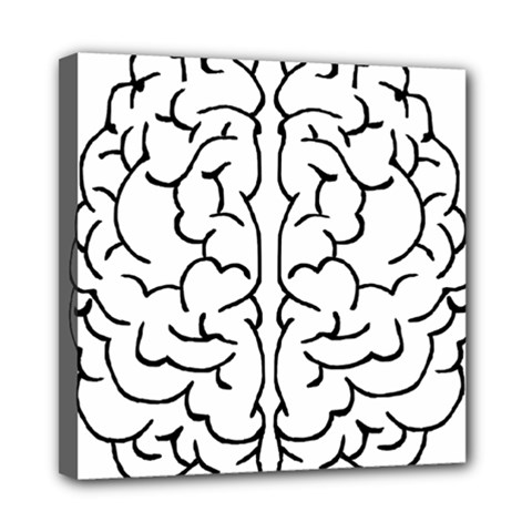 Brain Mind Gray Matter Thought Mini Canvas 8  X 8  by Nexatart