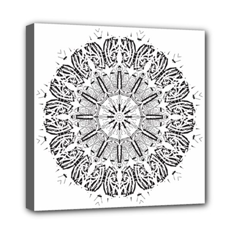 Art Coloring Flower Page Book Mini Canvas 8  X 8  by Nexatart