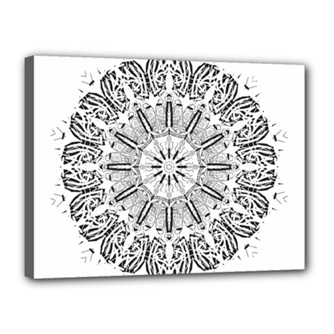 Art Coloring Flower Page Book Canvas 16  X 12  by Nexatart
