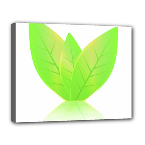 Leaves Green Nature Reflection Canvas 14  X 11  by Nexatart