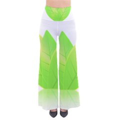 Leaves Green Nature Reflection Pants by Nexatart