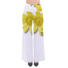 Flowers Spring Yellow Spring Onion Pants