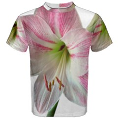 Flower Blossom Bloom Amaryllis Men s Cotton Tee