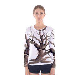 Tree Isolated Dead Plant Weathered Women s Long Sleeve Tee by Nexatart