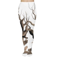Tree Isolated Dead Plant Weathered Women s Tights