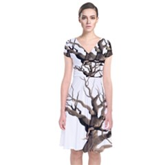 Tree Isolated Dead Plant Weathered Short Sleeve Front Wrap Dress