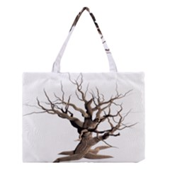Tree Isolated Dead Plant Weathered Medium Tote Bag by Nexatart