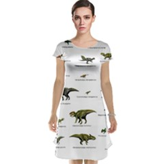 Dinosaurs Names Cap Sleeve Nightdress by Valentinaart