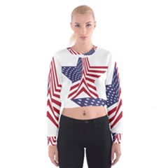 A Star With An American Flag Pattern Cropped Sweatshirt