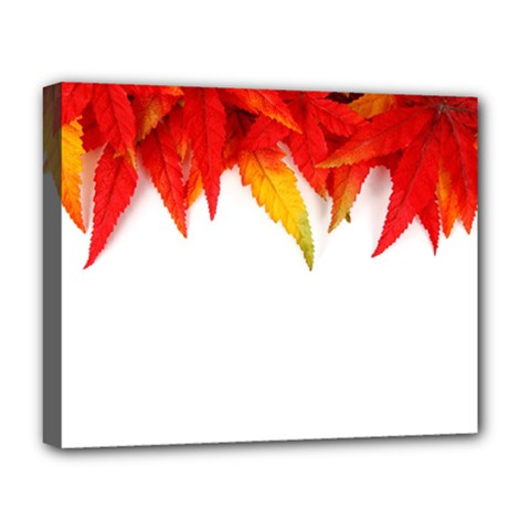 Abstract Autumn Background Bright Deluxe Canvas 20  X 16   by Nexatart