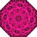 Pink Roses Roses Background Straight Umbrellas View1
