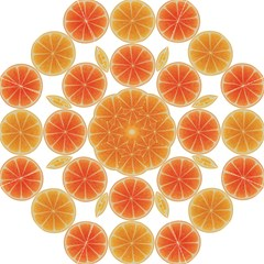 Orange Discs Orange Slices Fruit Hook Handle Umbrellas (medium)