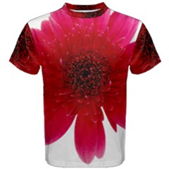Flower Isolated Transparent Blossom Men s Cotton Tee