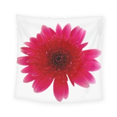 Flower Isolated Transparent Blossom Square Tapestry (small) by Nexatart
