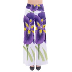 Lily Flower Plant Blossom Bloom Pants by Nexatart