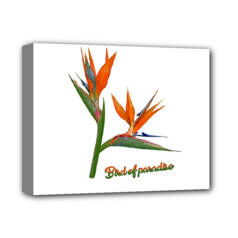Bird Of Paradise Deluxe Canvas 14  X 11  by Valentinaart