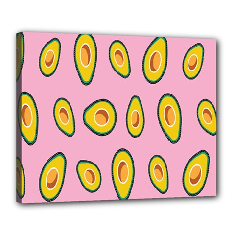 Fruit Avocado Green Pink Yellow Canvas 20  X 16  by Mariart