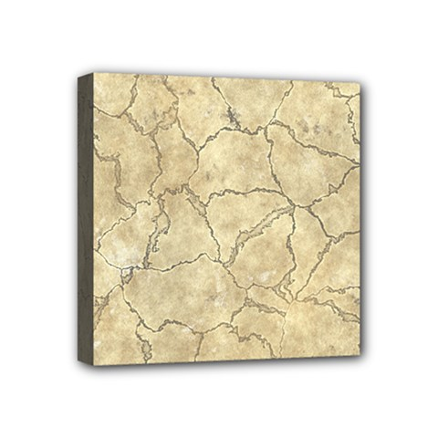 Cracked Skull Bone Surface B Mini Canvas 4  X 4  by MoreColorsinLife