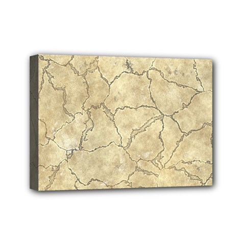 Cracked Skull Bone Surface B Mini Canvas 7  X 5  by MoreColorsinLife