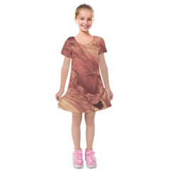 Fantastic Wood Grain,brown Kids  Short Sleeve Velvet Dress by MoreColorsinLife