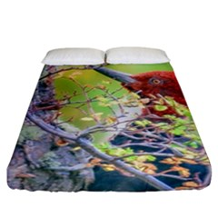 Woodpecker At Forest Pecking Tree, Patagonia, Argentina Fitted Sheet (california King Size) by dflcprints