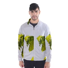 Leaves Nature Wind Breaker (men) by Nexatart