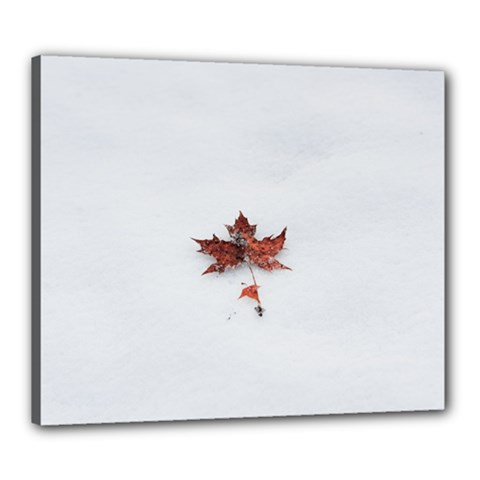 Winter Maple Minimalist Simple Canvas 24  X 20  by Nexatart