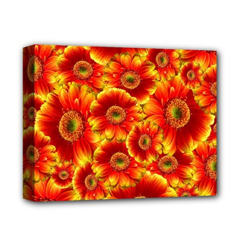 Gerbera Flowers Nature Plant Deluxe Canvas 14  X 11  by Nexatart