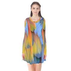 Spring Parrot Parrot Feathers Ara Flare Dress by Nexatart