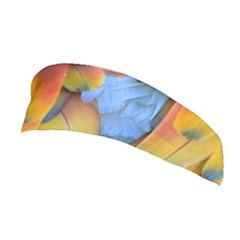 Spring Parrot Parrot Feathers Ara Stretchable Headband by Nexatart