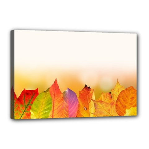 Autumn Leaves Colorful Fall Foliage Canvas 18  X 12  by Nexatart